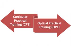 Figured 2. CPT dan OPT. Sumber: www.visavoice.com